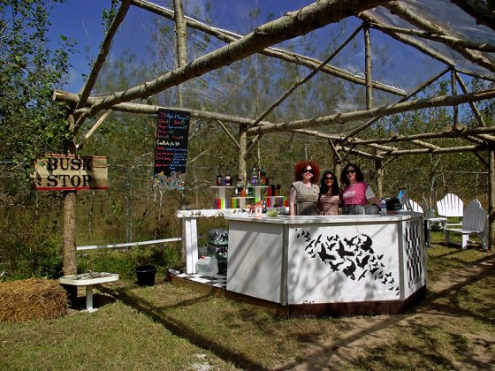 The Cocktail Bar at @LEOPALLOOZA, complete with polythene ceiling and a busker's stop.