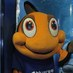 Twitter Bio - My name is Charlie the clownfish from the Newquay Blue Reef Aquarium! Follow me for news and updates.
